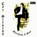 Stevens Cat - Matthew & Son
