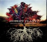 Plant Robert Digging Deep: Subterranea