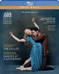 Royal Ballet; Andrea Molino-Dances At A Gathering / The Cellist