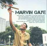 Gaye Marvin Icon