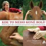 Arcaro Kde to mého koně bolí?