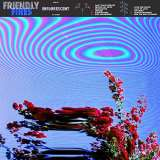 Friendly Fires - Friendly Fires (Standard Coloured Vinyl)