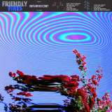 Friendly Fires - Inflorescent (Standard Black Vinyl)