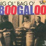 V/A-Big Ol'bag O'boogaloo 1